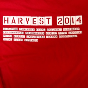 We finally got our act together and made harvest shirts!